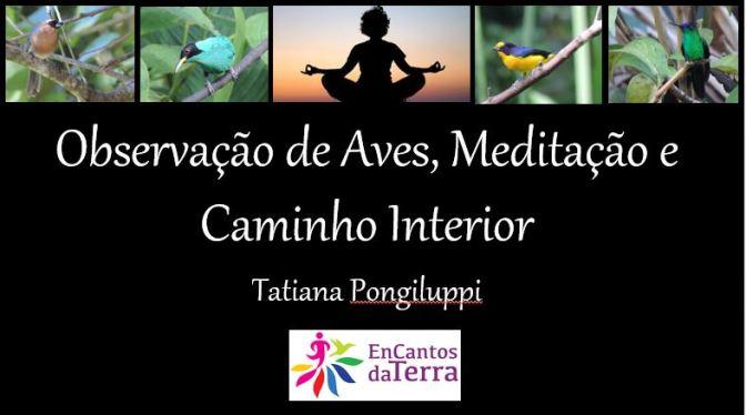 observação e meditaçao